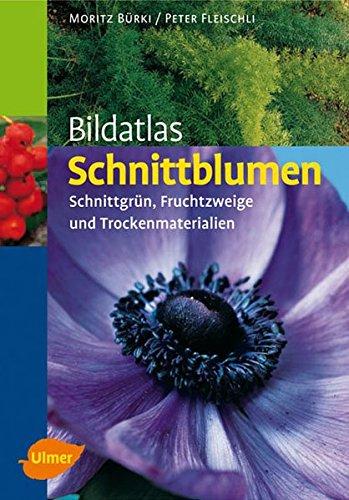 Bildatlas Schnittblumen: Schnittgrün, Fruchtzweige und Trockenmaterialien (Bildatlanten)