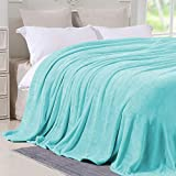 Hboemde Fleece Blanket Queen Size Light Blue Soft Cozy Lightweight Bed Blanket Microfiber Plush Flannel Blanket for Couch,90x90in
