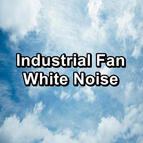 Brown Noise Sound, Pink Noise Sound & White Noise Sound