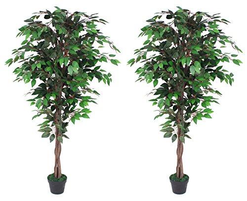 AMERIQUE AM0912FC6FTPK2 Gorgeous Ficus Trees Artificial Silk Plant, 6', Emerald Green, 2