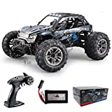 Fistone RC Truck 1/16 High Speed Racing Car , 24MPH 4WD Off-Road...