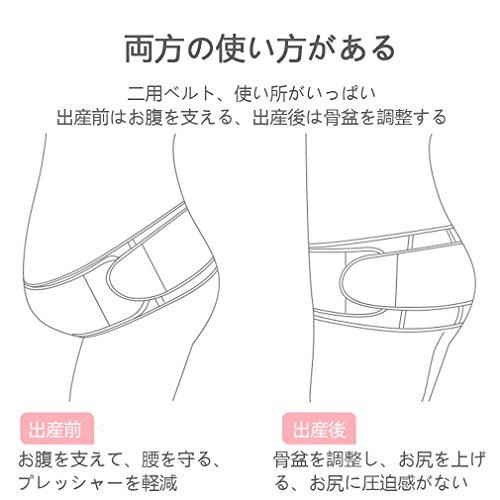 SEVEN 妊婦帯 腹帯 ダブルベルトで体にフィットシリーズ 産前産後に使う骨盤ベルト 恥骨や腰の負担をしっかりサポート フリーサイズ ベージュ