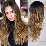 ENTRANCED STYLES 24 Inches Ombre Brown Wig Synthetic Long Wigs for Women Natural Wave Hair Wigs Side Part Heat Resistant Natural Looking