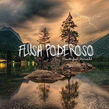 Flush Poderoso Limpiar subconsciente