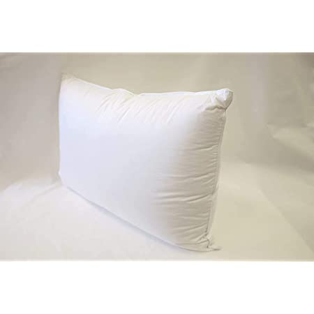 60 x 60 cm down pillows fill pillow cushions inside cushion sofa cushions down white 800 g