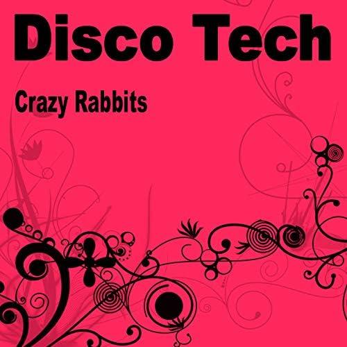 Crazy Rabbits