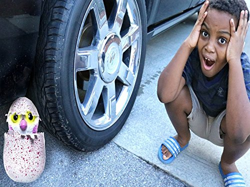 Reckless Shasha Crushes Hatchimal Toy!