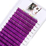 Lash Extensions Lashes Colored Individual Eyelashes C/D Curl Purple Classic Eyelash Extensions Supplies 0.07mm 16 Rows 8-16mm Mixed Lashes by WENDY LASHES (Purple-0.07-D, Mixed 8-16mm)