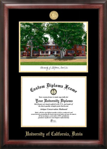 Campus Images NCAA UC Davis Aggies Gold Embossed Diploma Frame with Lithograph Multicolor One Size