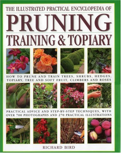 Compare Textbook Prices for Illustrated Practical Encyclopedia of Pruning, Training and Topiary: How to Prune and Train Trees, Shrubs, Hedges, Topiary, Tree and Soft Fruit, ... photographs and 100 Practical Illustrations  ISBN 9780754815372 by Bird, Richard,Anderson, Peter
