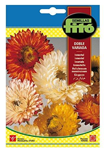 Semillas Fitó 569 - Semillas de Inmortal Flor de Papel - Siempreviva