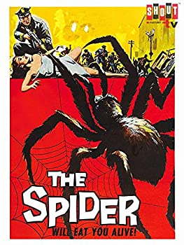 Best earth vs the spider Reviews