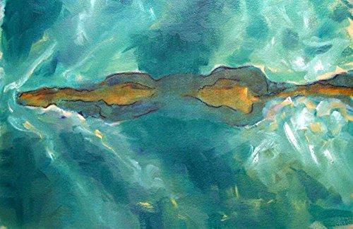 AFDRUKKEN-op-GEROLDE-CANVAS-Horse-Zwemmen-Hoffman-Kate-Dieren-Afbeelding-gedruckt-op-canvas-100%-katoen-Opgerolde-canvas-print-Kunstdruk-op-gerold-canvas-v-Afmeting-66_X_104_cm