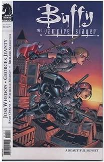 Buffy the Vampire Slayer Season 8 #11: A Beautiful Sunset (Variant Cover, Dark Horse Comics)