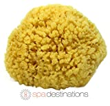 Natural Sea Sponge 4-5' by Spa Destinations®'Creating The Perfect Bath and Shower Experience' Amazing Natural Renewable Resource! 100% Satisfaction Guarantee!