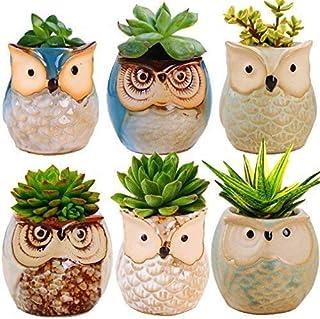 6 Owl Planter Pots - Ideal as Succulent Plant Pots - Gorgeous Owl Design - Includes Drainage Hole - Flower or Bonsai Plant...