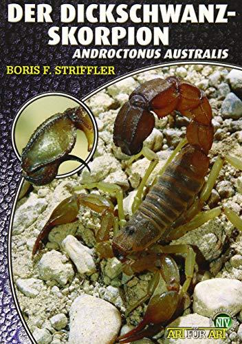 Der Dickschwanzskorpion: Androctonus australis (Art für Art: Terraristik)