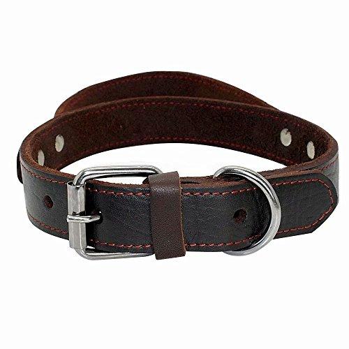 PET ARTIST Hundehalsband aus echtem Leder, mit Griff, strapazierfähig, für mittelgroße und große Hunde, zum Spazierengehen, Training, Boxer, Dobermann, Pitbull Bulldog