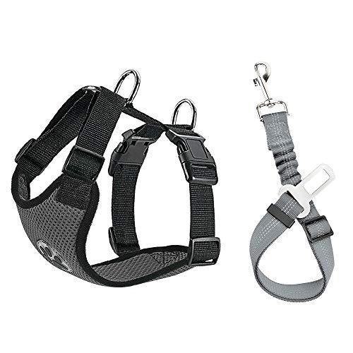 Nasjac Hund Auto Geschirr Sicherheitsgurt-Set, Pet Vest Harness mit Sicherheitsgurt, atmungsaktives Material und Verstellbarer elastischer Gurt für Hunde, die im Freien Laufen (Grau Mesh, S)