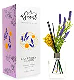 4SCENT Reed Diffuser Set 6.7 fl oz with Preserved Gypsophila (Baby's Breath) and Artificial Lavender for Home Fragrance and Decor   Aromatherapy with Essential Oil and Rattan Sticks   Lavender Lemon