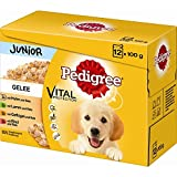 PEDIGREE Junior en jalea Multi Pack, 4x 12x 100g Perros Forro
