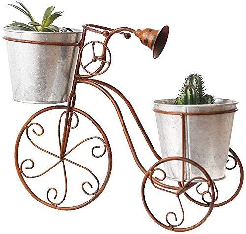 Bloemenstandaard- Metal Tribune van de bloem van het smeedijzer Tribune van de bloem Plant stand met 2 Flower Buckets overdekte fietsenstalling Floor Flower Pot Stand-bloem Stand, Maat: 32x15x26.5cm /