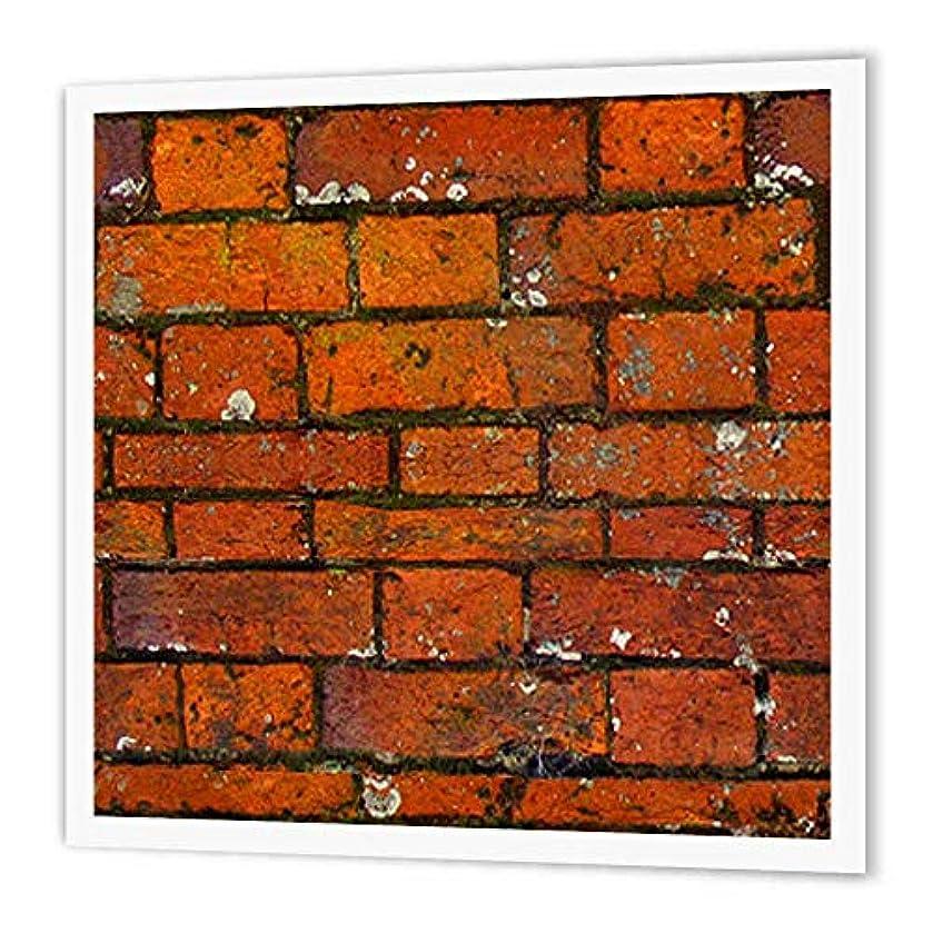 3dRose ht_63049_3 Brick Wall Pattern-Iron On Heat Transfer, 10 by 10