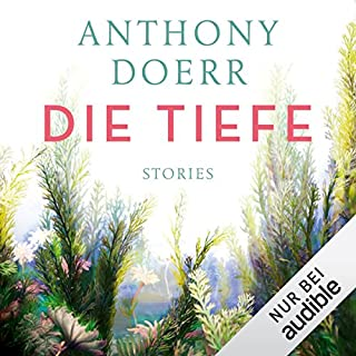 Die Tiefe: Stories Titelbild