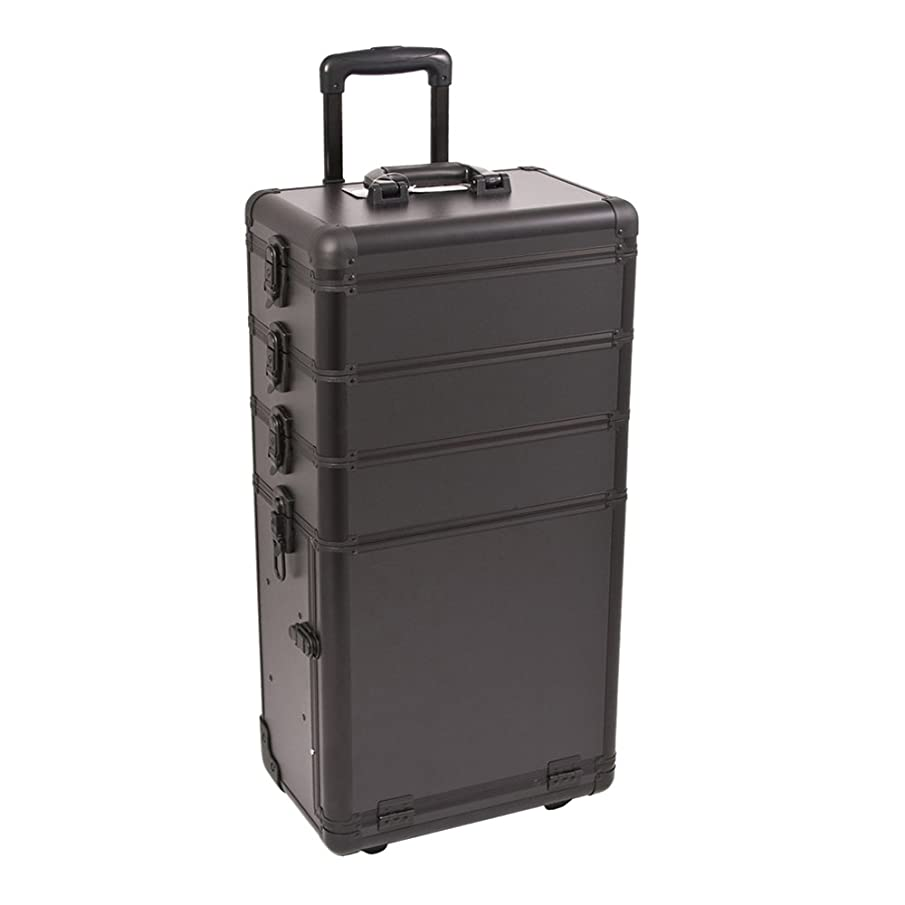 Craft Accents I3362 Smooth Trolley Craft/Quilting Storage Case, Black