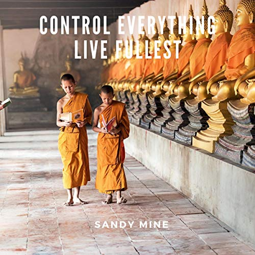 Control Everything audiobook cover art