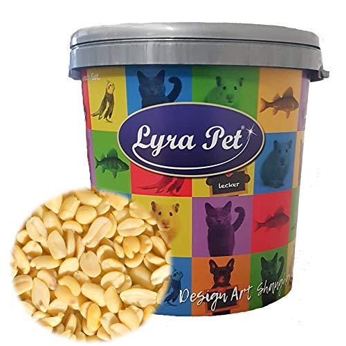 Lyra Pet® 10 kg Erdnusskerne Splits HK Südamerika Haut Erdnussbruch Erdnüsse Vogelfutter Wildvogelfutter in 30 L Tonne