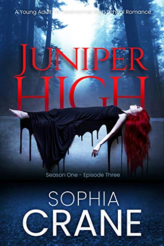 Juniper High 3 - A YA shifter high school romance: Witches, Shifters,