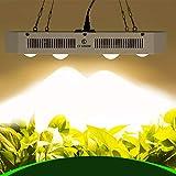 COB LED Grow Light CF Grow Citizen-X6, lámpara de Cultivo LED de Espectro Completo 900W con Chips de 3500K, Interruptor Dual de Encendido/Apagado para Plantas de Interior