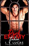 Dark Enemy: Taken (The Children Of The Gods Paranormal Romance Series Book 4)