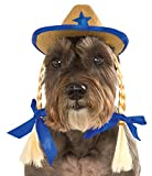 Pet Cowgirl Hat with Pigtails, Small/Medium
