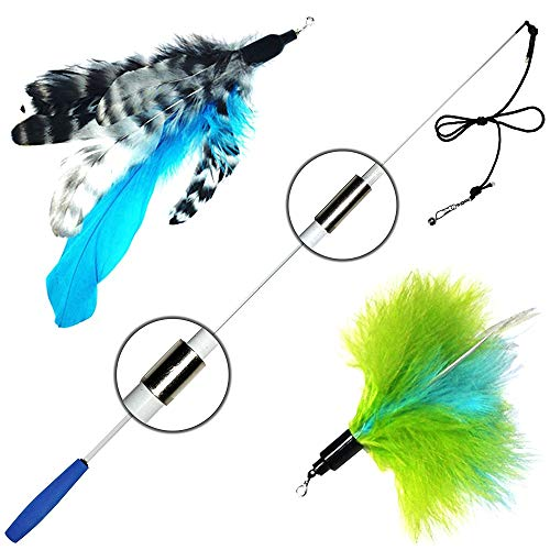Pet Fit For Life Retractable Wand with 2 Feathers For Your Cat and Kitten - Cat Toy Interactive Cat Wand