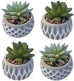 Kunstpflanze künstliche Pflanze Büro Deko Sukkulenten im Topf Plastikpflanzen klein Blumentopf Kunstblumen (Sukkulenten in grauem Topf, 4 STK)