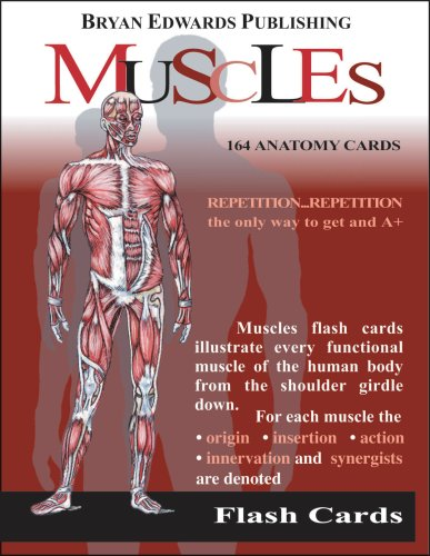Price comparison product image The Muscles (Flash Cards) (Flash Anatomy)