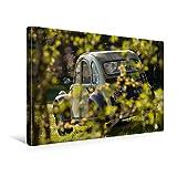 CALVENDO Toile Textile de qualité supérieure de 45 cm x 30 cm, 2CV Dolly | Tableau sur châssis | Impression sur Toile sur Toile véritable | Citroën 2CV (Technologie Technologie