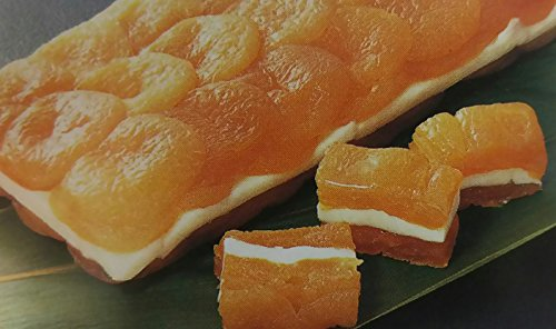 前菜 冷凍 あんず博多 約420g ( 長さ約21cm×横約7.5cm×高さ約2cm ) 解凍後お好みの大きさにカットしてお召し上がり頂けます。