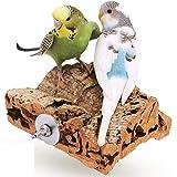 Vogelgaleria Korksitzbrett S, Vogelsitzbrett, Korkbrett, Sitzbrett, Knabberspielzeug, Vogel/Nagerzubehör für Wellensittiche, Nymphensittiche, Rennmäuse & Co. Original Produkt
