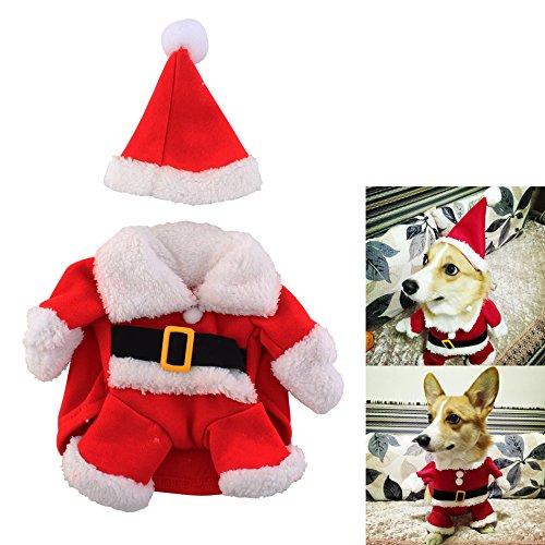 Weihnachtsmann-Kostüm für kleine Hunde mit Weihnachtsmütze ( Größe S ) - Hundepullover Hundekleidung Party Mottoparty Weihnachten Cosplay - Nikolaus Santa Claus