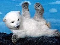 CQLFXDジグソーDiy木製パズルクリスマスパズル子供のための1000ピース大人のティーンエイジャー最高のジグソーパズルおもちゃゲームギフトかわいい小さな白いクマ