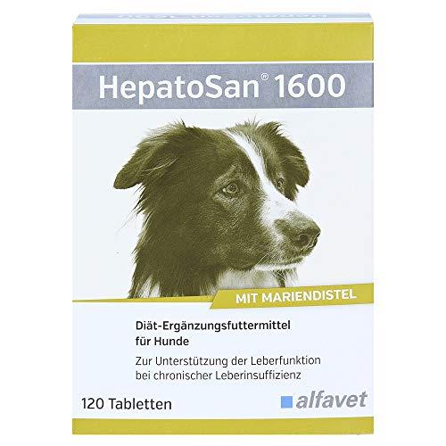 HepatoSan 1600 Zur Unterstützung der Leberfunktion bei chronischer Leberinsuffizienz