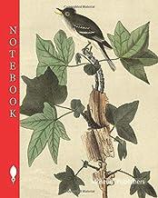 Notebook: Traill's Flycatcher - Sweet Gum, Liquidambar Styraciflua, Flycatcher, Muscicapa traillii, Amber Tree, Liquidamba...