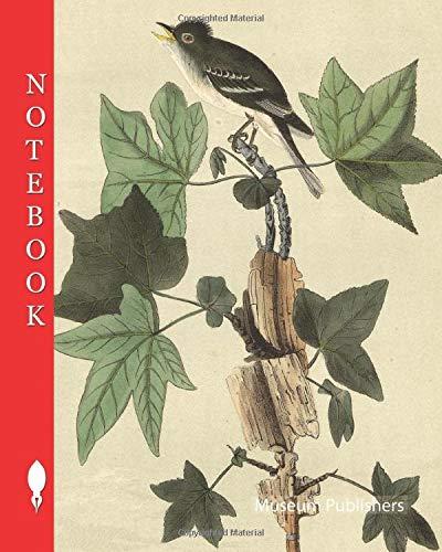 Notebook: Traill's Flycatcher - Sweet Gum, Liquidambar Styraciflua, Flycatcher, Muscicapa traillii, Amber Tree, Liquidambar, Audubon, John James, 1856