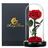 Glass Rose -Preserved Real Rose in Glass Dome Gift Eternal Flower,Beautiful Creative Gift for Valentine's Day Mother's Day Christmas Anniversary Birthday Thanksgiving (red)