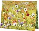 Postkartenbuch Sommergrüße 15 Postkarten Rannenberg & Friends