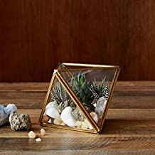 Ruhi Collections LamJum Metal and Glass Geometric Terrarium Container Display Box Centre Piece Gift for Succulent Air Plan...