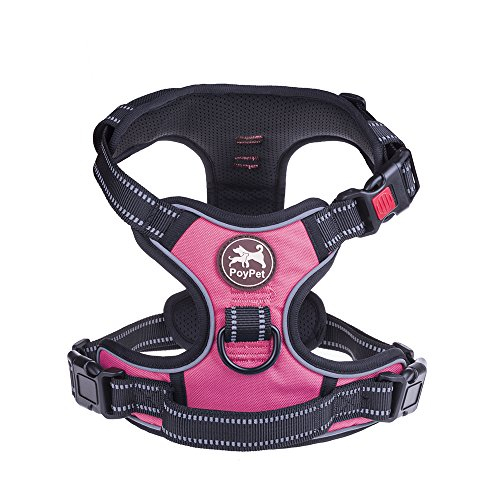 Poypet No Pull Dog Collar Harness